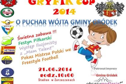 Gryfik CUP 2014